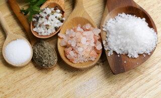 Sool meie toidulaual - millist eelistada ja kui palju seda tohiks üldse süüa?