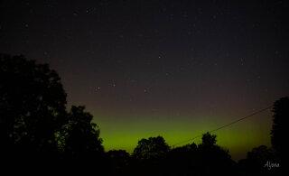 Смотрите, какое красивое северное сияние в эстонском парке Лахемаа случайно удалось запечатлеть