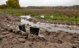 Неновость: на выходных погода в Эстонии обещает быть весьма мерзопакостной