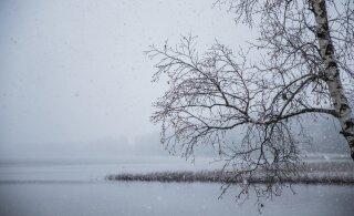 Мягкий ноябрь заканчивается: вскоре похолодает до семи градусов мороза