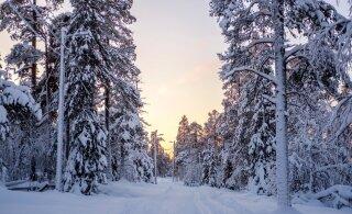 Синоптик: самые холодные ночи ожидаются с пятницы по воскресенье