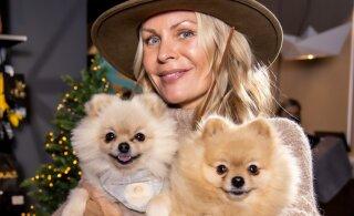 FOTOD | Nunnumeeter põhja! Koerad tõid tuntud peremehed ja –naised uusimat moodi uudistama