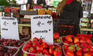 Vaat, kus imelugu! Pärnu turule ilmusid üleöö Läti maasikad
