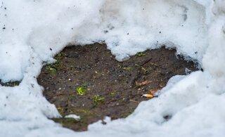 Погодка шепчет: влюбленные, 14 февраля на романтическую прогулку под луной надевайте калоши!
