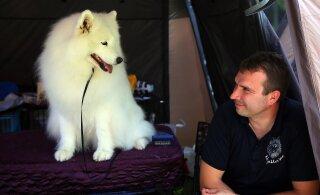 Собачья выставка в Нарве не состоится: 500 человек в одном помещении — слишком опасно. Организатор потерял десятки тысяч евро