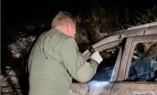 В России застрелили и сожгли супругов и их 16-летнюю дочь. Есть версия, что их убил сосед по даче, на лошадей которого жаловалась семья
