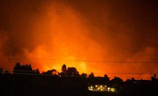 В Калифорнии бушуют пожары: ветер и пандемия осложняют тушение и эвакуацию
