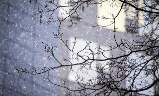 Солнце или снегопад, мороз или оттепель? На Рождество погода преподнесет нам сюрприз