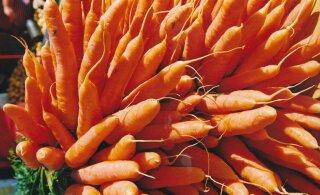 15 põhjust, miks peaksid just talveperioodil oma menüüsse rohkem vitamiinirikast porgandit lisama