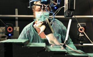 Elektristimulatsioon aitab halvatud uuesti jalule