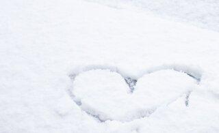 FOTO ja VIDEO | Mitmel pool Eestis sajab täna lund