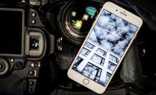 Lekked: uus odav-iPhone on tulekul
