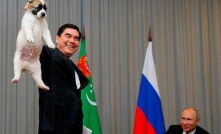 ГЛАВНОЕ ЗА ДЕНЬ: Мнимая смерть президента Туркменистана и победа партии Зеленского на выборах