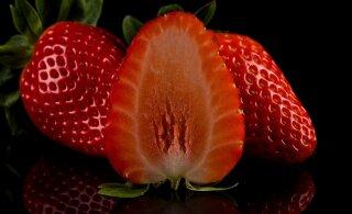 TAGATOA VÕNKED | Värsked maasikad võtsid EKRE reitingu kõhu lahti