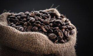 Teadlased selgitasid välja: miks kohv kakale ajab