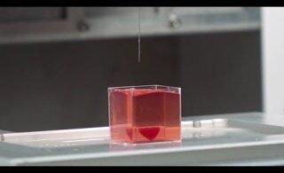 FOTOD JA VIDEO | Iisraeli teadlased 3D-printisid esmakordselt inimkoest südame