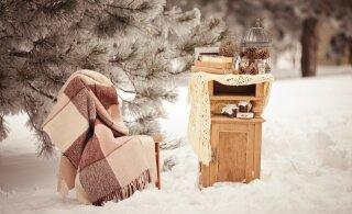 Ура! И на Рождество, и на Новый год погода обещает нам самый лучший подарок!