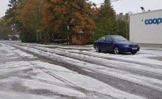 ФОТО | На Сааремаа землю укрыл белый ковер. Но это не снег
