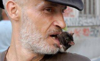 Kui inimene Maalt kaob, jäävad meid igatsema prussakad ja rotid