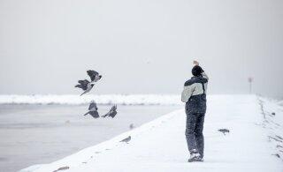 В Литве можно получить штраф за прогулку у моря
