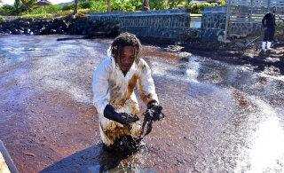 FOTOD ja VIDEOD | Katastroof: ränk naftaleke reostab Mauritiuse neitsilikku loodust