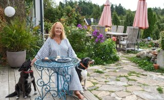 FOTOD   Laudast sai ateljee, ent enne maalimist peab supp keema   Epp Maria Kokamägi tutvustab boheemlasliku Sepamaa talu ilu