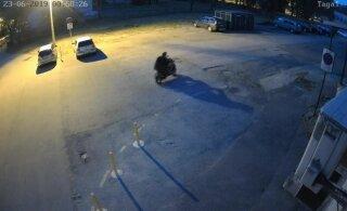 ВИДЕО | Полиция просит помощи в поиске людей, которые подожгли в Нарве автомобиль