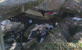 ФОТО | Горы мусора в реке Пирита ошарашили местных жителей