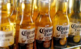 Кроме шуток: коронавирус нанес сокрушительный удар по пиву Corona
