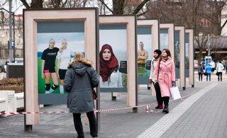 """ФОТО: В парке Таммсааре открылась выставка """"Свои"""""""