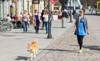 Мэрия Тарту предложила горожанам для летних прогулок необычное место