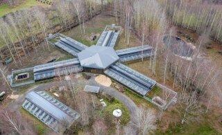 Hävimisohus euroopa naaritsad said loomaaias uue keskuse