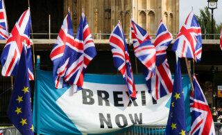 Juhtumiuuring: Brexit ajas ühe briti mehe päriselt hulluks