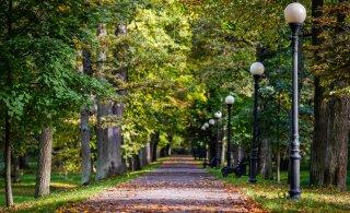На следующей неделе погода вновь порадует нехарактерным для октября теплом