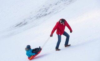 ФОТО | Жители Эстонии наслаждаются по-настоящему зимней погодой