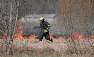 ФОТО: В волости Тори огнем объяты два гектара земли. Пожар мог начаться из-за вылетевшего в поле автомобиля