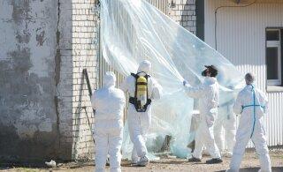 В Китае и Монголии появились случаи бубонной чумы. Что это такое и насколько опасно?