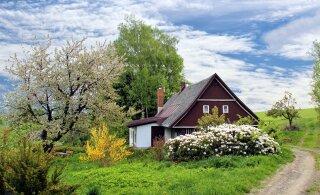 СТАТИСТИКА | Осенью цены на дачи снижаются! Самый большой выбор — в Ида-Вирумаа