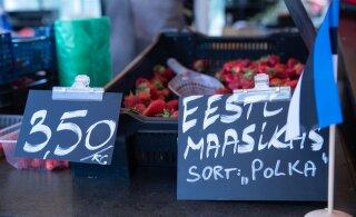"""Maasikaturgu valitseb vana hea """"Polka"""". Miks see nii on?"""