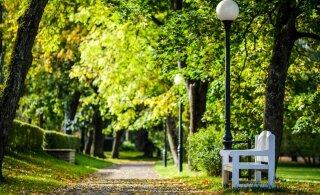 Надолго ли в Эстонию пришло бабье лето? Читайте прогноз погоды