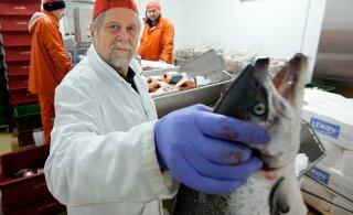 Сага с листерией продолжается: M.V.Wool утверждает, что Ветеринарно-пищевой департамент нарушил важное правило