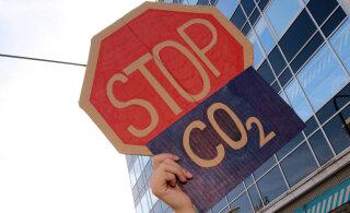 5 CO2 kalkulaatorit: mitu km saab sõita šokolaadiga ning mitu puud pead istutama?
