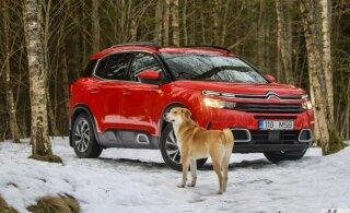 PROOVISÕIT | Citroën C5 Aircross: boonustega linnadžiip tänava päikeseliselt poolelt