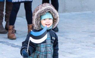 День защиты детей и День бабушек и дедушек станут в Эстонии праздниками, когда вывешиваются флаги