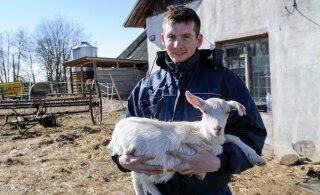 Катри Райк — Репинскому: местное самоуправление — это не ферма по разведению коз