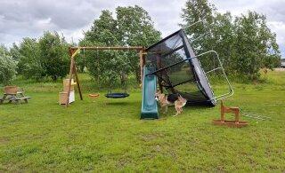 LUGEJATE VIDEOD JA FOTOD | Vaata, kuidas torm Eestis asjatab