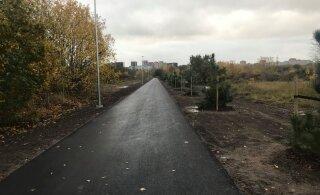 В Ласнамяэ завершилось строительство пешеходной дорожки вокруг будущего грандиозного парка
