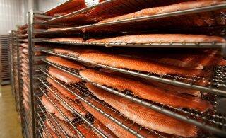 На заводе M.V. Wool снова нашли листерию. Предприятие могут закрыть