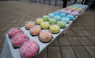 ФОТО: Протестующие подарили Юри Ратасу сто тортов