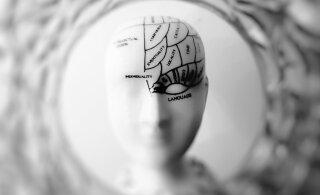 7 мифов о мозге, в которые вы до сих пор верите зря
